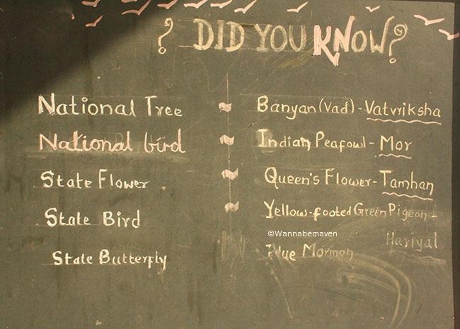 pictorial representation mediums to educate children on school trips - maharashtra nature park