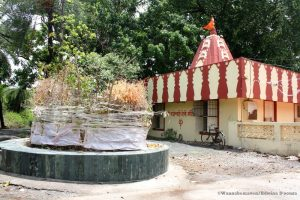 Temple inside Vasai Fort