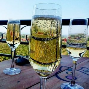 Sula Vineyards Tour Nashik (12)