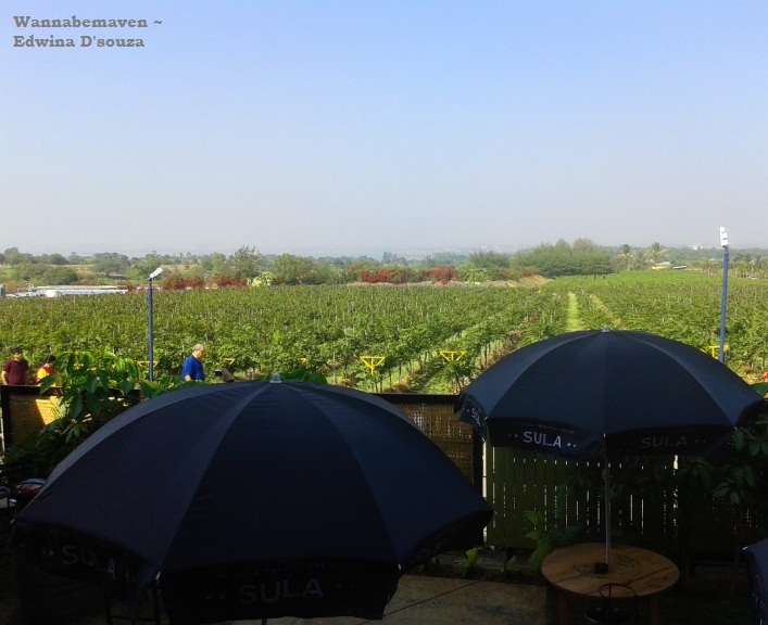 Sula Vineyards Tour Nashik (3)