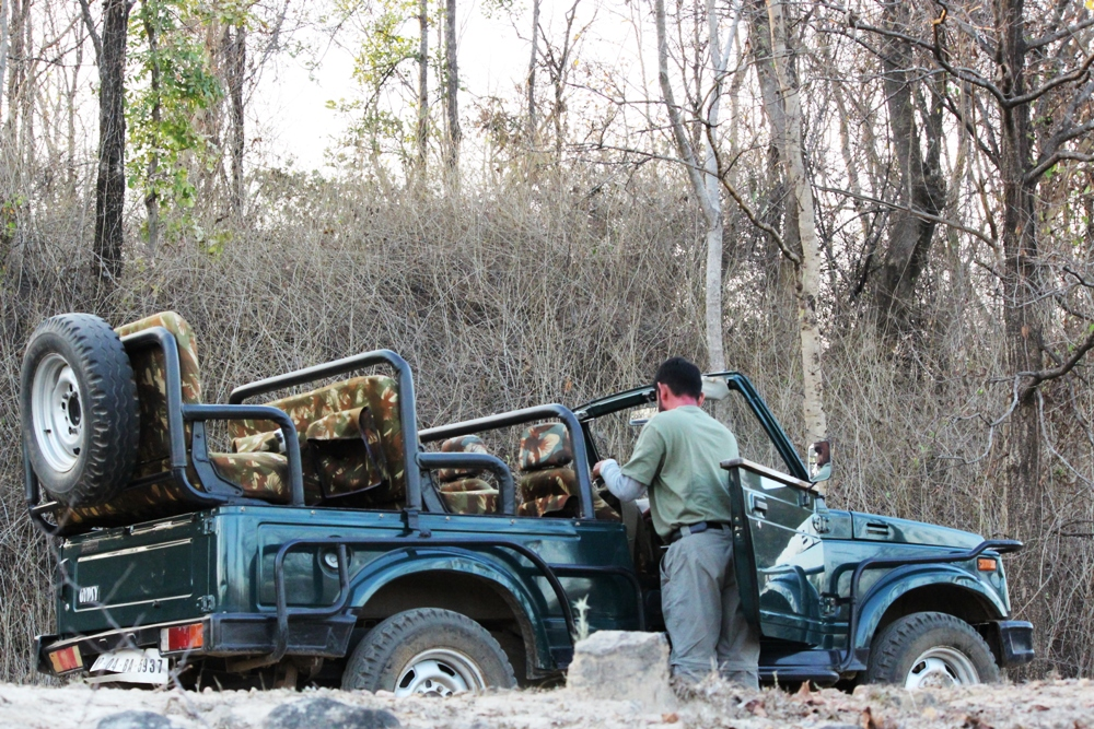 game-drives-1