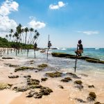 Why everyone is planning a trip to Sri Lanka